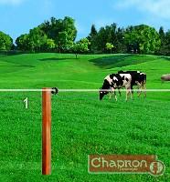 Schemat pastucha dla krów